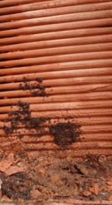 Dirty Welded Core Close Up